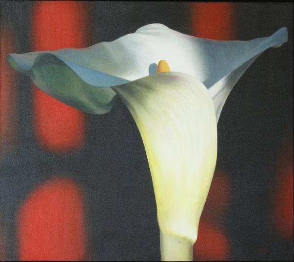Lily By Roddy McKenzie